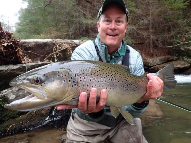 Blackhawk fly fishing clarkesville ga for Georgia trout fishing